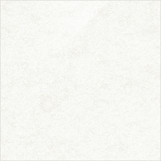 パールホワイト FS-101